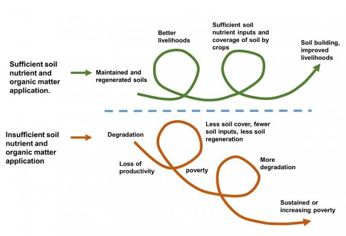 Concept of downward or vicious cycle, see image caption