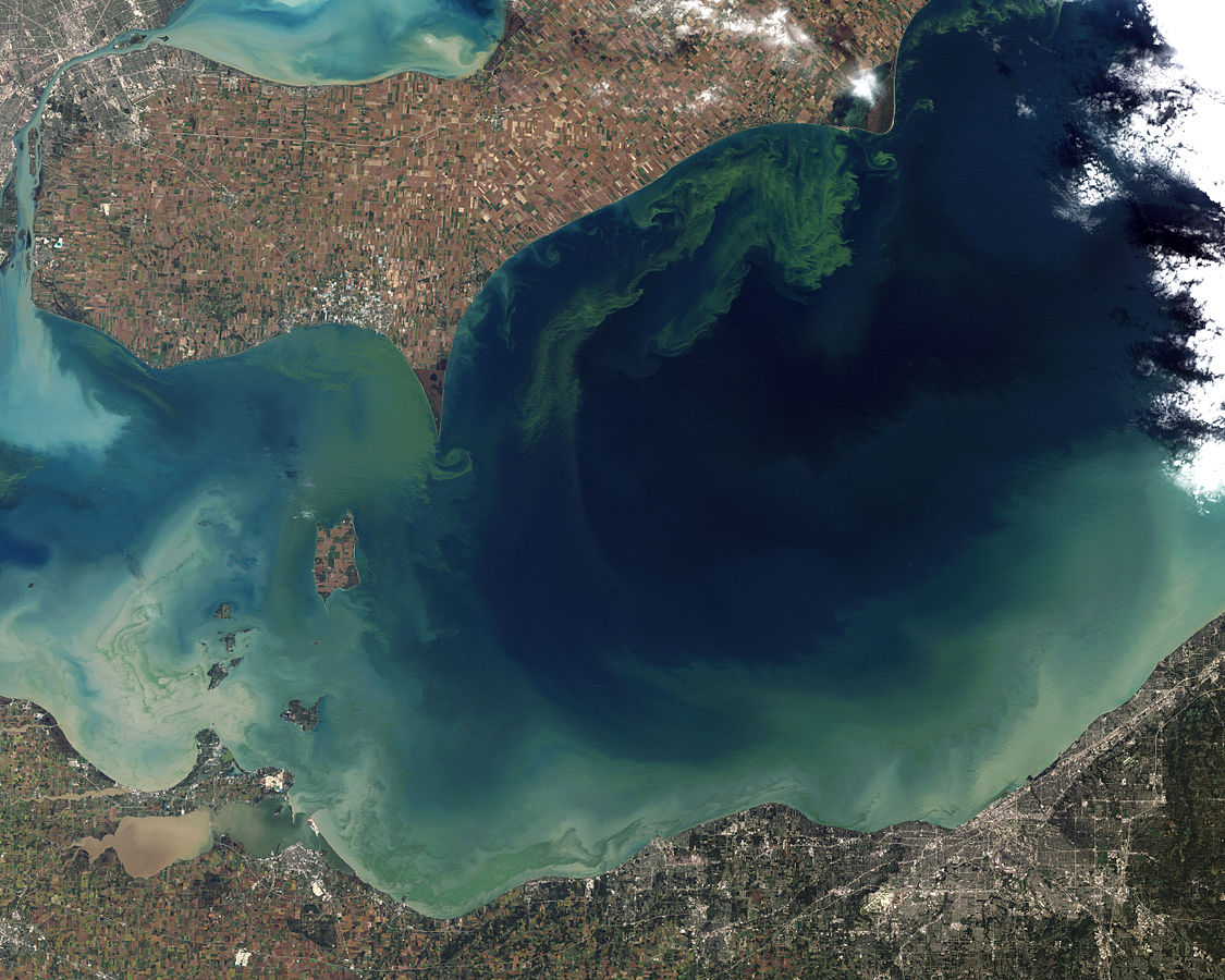 Aerial image of an algal bloom in Lake Erie