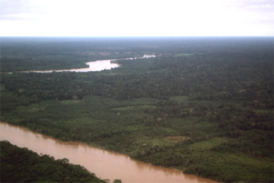 Aerial view of the Amazon tributary
