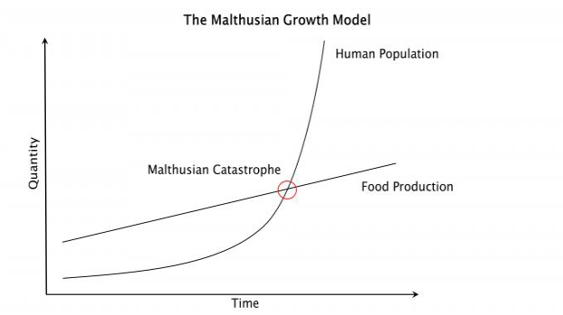 Malthusian growth model as described above. Quantity on y, time x. Intersection of population and food is the catastrophe point
