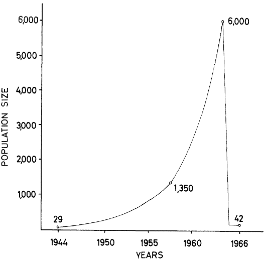 Grapf showing exponential growth of reindeer from 1944-1966