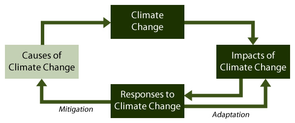 essay of climate changes