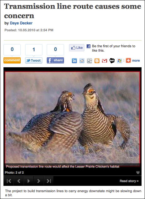 Proposed transmission line route would affect the Lesser Prairie chicken's habitat.