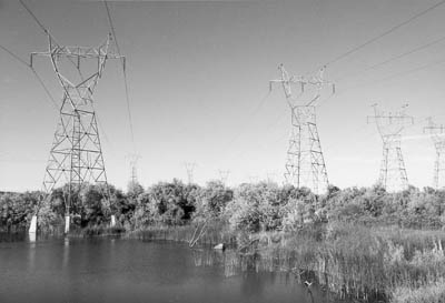 BPA transmission towers.