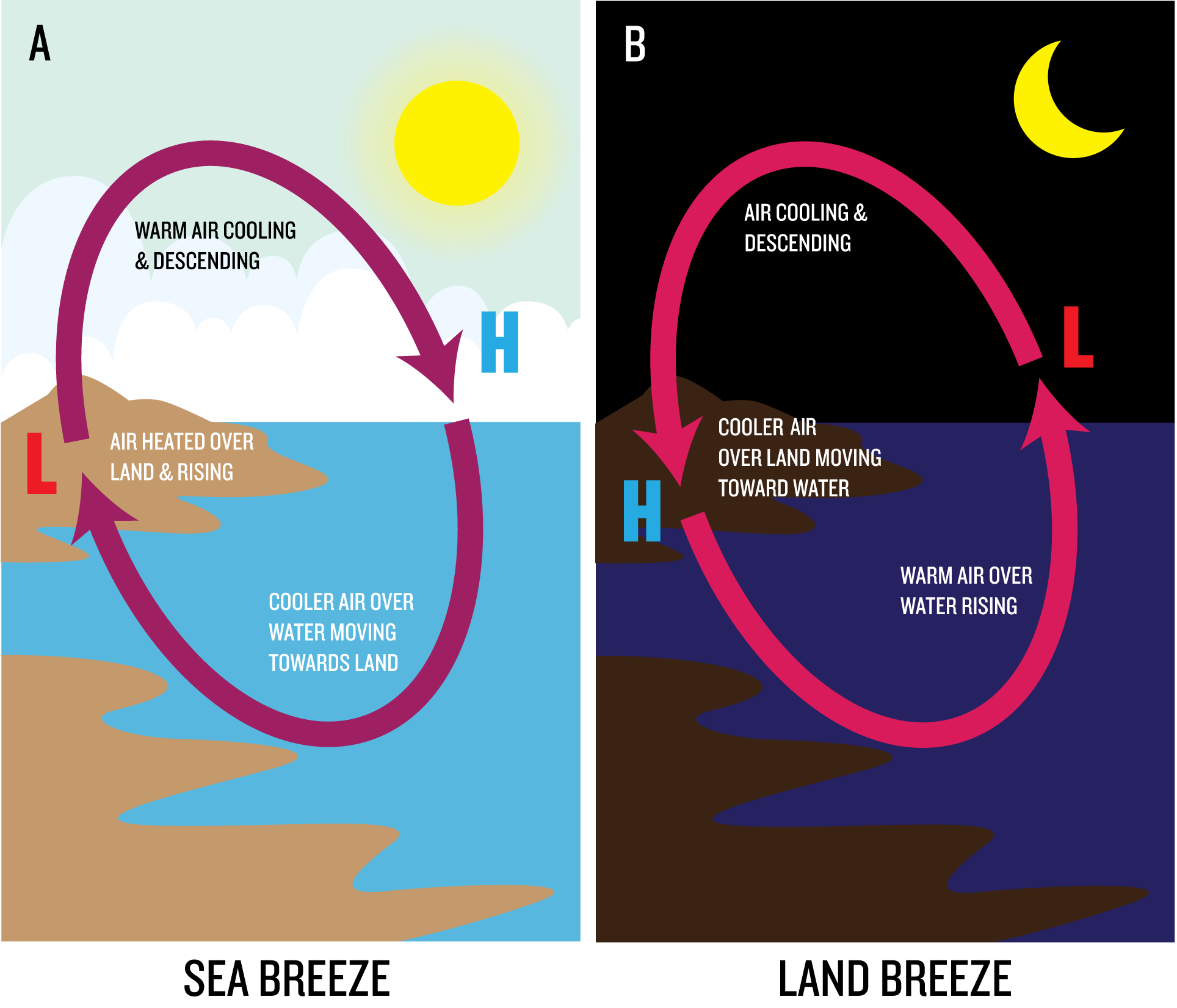 Energy and circulation em sc 100 graphic showing heated air rising on the coastline then cooling and descending land and sea breezes compared pooptronica