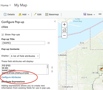 Configuring attributes in ArcGIS Online