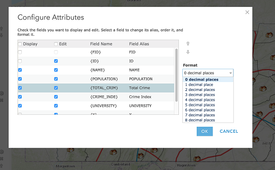 Assigning user-friendly field aliases in ArcGIS Online