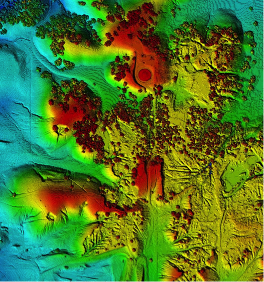 LiDAR digital surface model