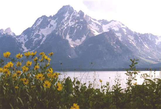 another reason why loose rock matters: mass movement and the grand tetons