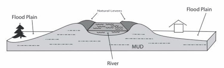 Cross sectional diagram of a river, with natural levees. Explained in text.
