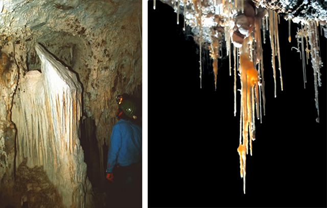 Two pictures.  1. Shield formation in a cave.  2. Twisty stalactites (called helectites).