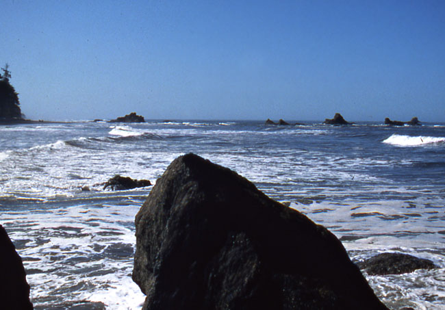 Coast of Olympic National Park with rocks jutting out of the water.