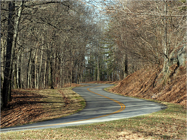 winding road along the Blue Ridge Parkway, Virginia, in January. There are no leaves on the trees.
