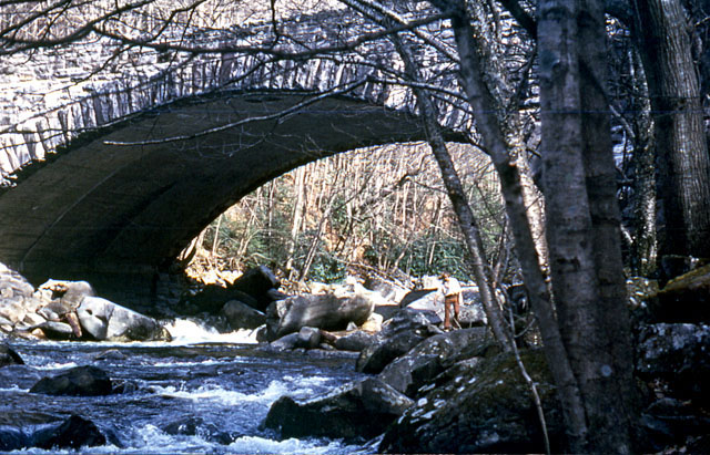 Bridge with a stream running under it, Great Smoky Mountains National Park.
