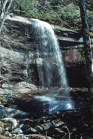 A Waterfall in the Smokies.  Picture taken in 1954.