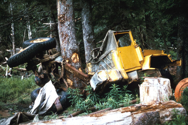 A large tractor trailor bent around a tree with it's back wheels in the air.  The force of the wave caused this.