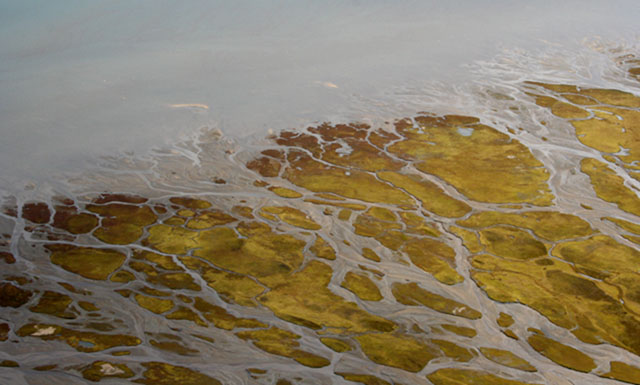 Arial view of a Greenlandic delta, near Muddy Bay, shows sand bars and braided rivers