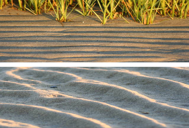 On top, rippled sand, with beach grass in the background. Below, a close-up of rippled sand