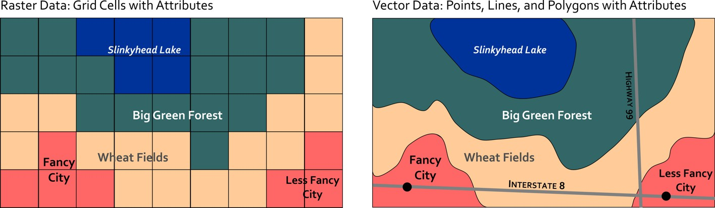 Raster data is represented on the left in 9 by 5 grid of squares. Vector has curves and looks more like a map.