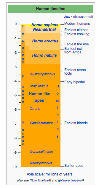 Human timeline over millions of years