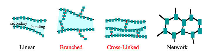 linear, branched, cross-linked, and network polymer structures