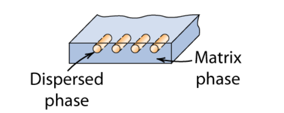 Dispersed phase( looks like little 4 little separated tubes) and matrix phase (area surrounding and separating the tubes)