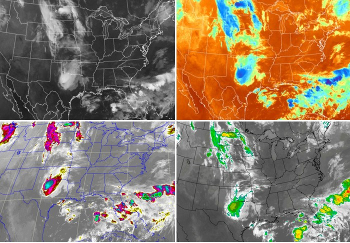Four different views (enhancements) of the same IR image.