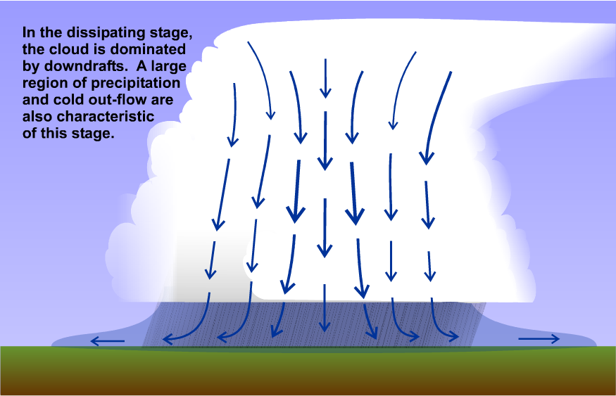 Schematic: dissippating stage of a single-cell thunderstorm is dominated by downdrafts.