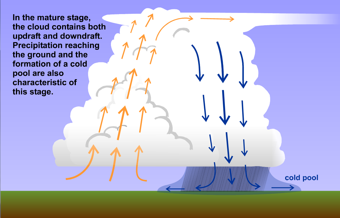 Schematic showing the state of updrafts and downdrafts in a mature-stage single-cell thunderstorm
