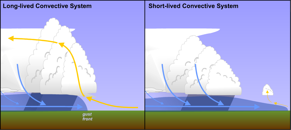 Schematic comparing the restrained gust front of a long-lived convective system to the unrestrained gust front of a short-lived one.