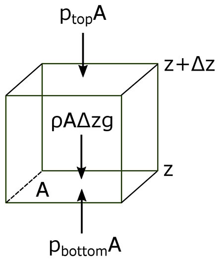 cube showing forces that determine hydrostatic balance as described in the text below