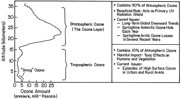 cross section of vertical ozone layers for tropics. See link in caption for text description