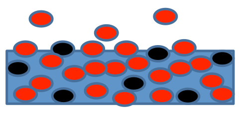 Sketch of a flat liquid surface with a solvent (water, red dots) and a solute (black dots).