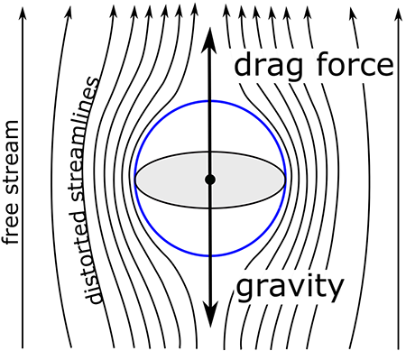 Air flow around a falling particle as described in the text above