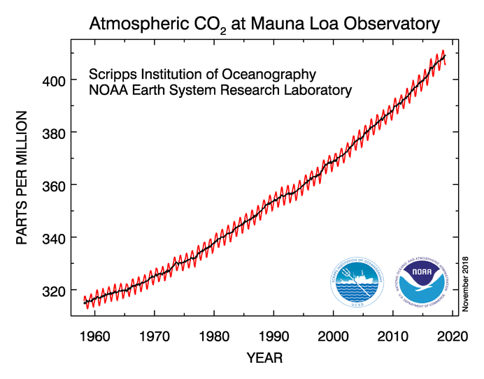 Graph of Atmospheric CO2 at Mauna Loa Observatory. Steady increase from 310 parts per million in 1960 to over 400 ppm in 2018.