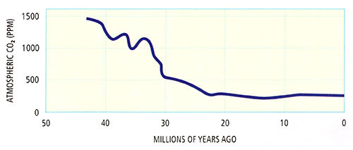 Geologic records of CO2levels (PPM) over time. 45 million yrs ago = 1500 PPM, today about 250 PPM.