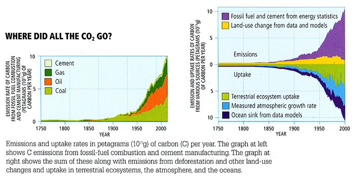 Annual change in atmospheric CO2 concentrations. More in text description below