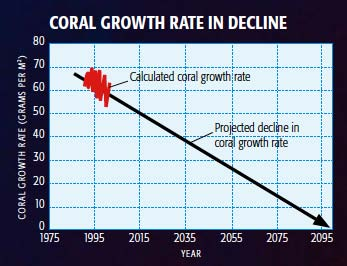 Coral Growth Rate in Decline: Calculated coral growth rate and projected decline in coral growth rate.