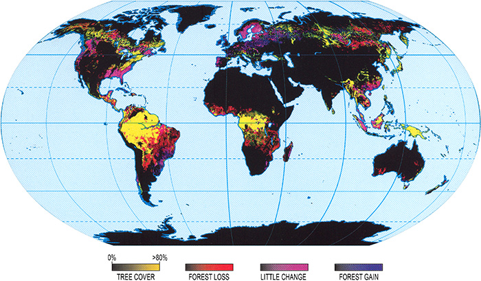 Map showing the rate of change in forested area between 2000 and 2012. (highest in tropics and subtropics)