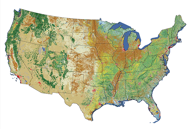 NLCD 2011 image for the Continental U.S. showing land cover changes